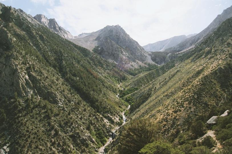 brook-forest-hills-3939